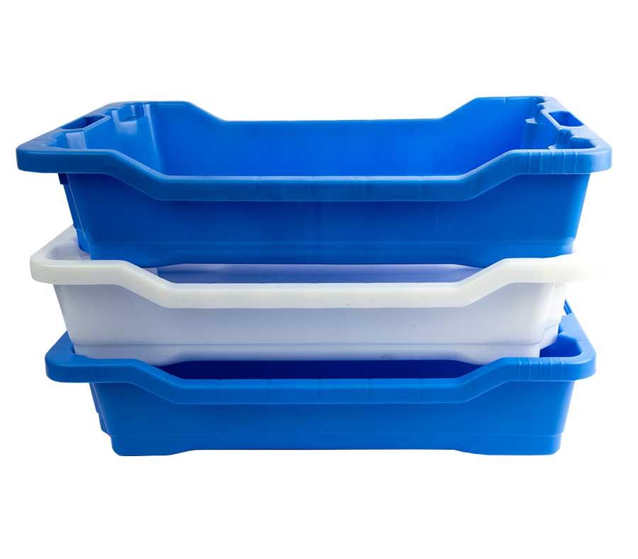 cassetta-ittica-blu-11