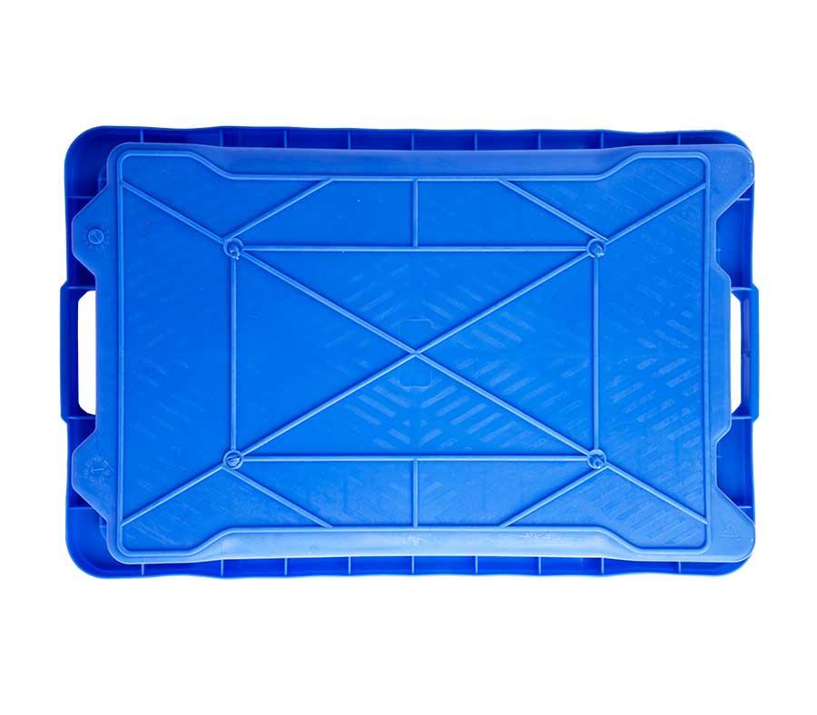cassetta-ittica-blu-12