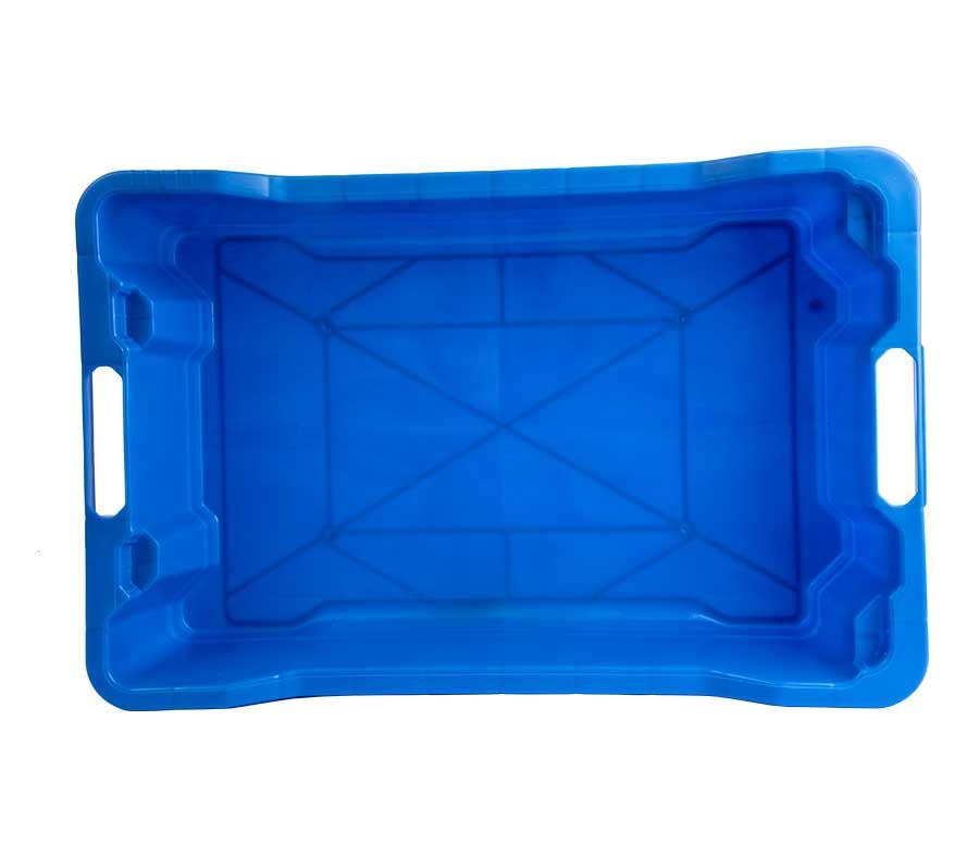 cassetta-ittica-blu-4