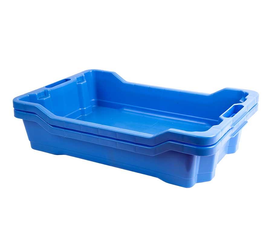cassetta-ittica-blu-6