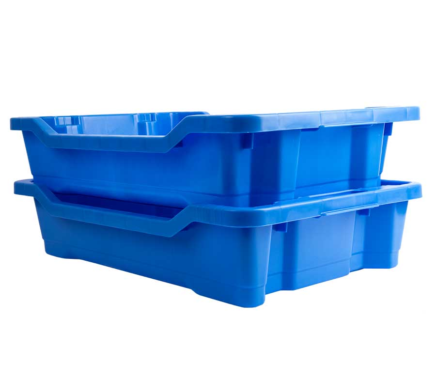 cassetta-ittica-blu-9